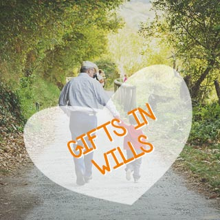 Gifts In Wills3